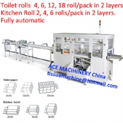 Full Automatic Toilet Paper Kitchen Towel Roll Bundle Packing Machine